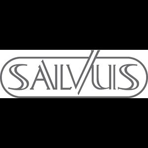 https://dekantoorjongens.com/wp-content/uploads/2021/03/Salvus.png
